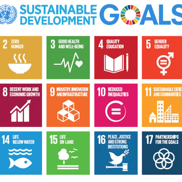 Independence and Interdependence: Preliminary Thoughts from the Viewpoint of Japan's Experience on SDGs Implementation